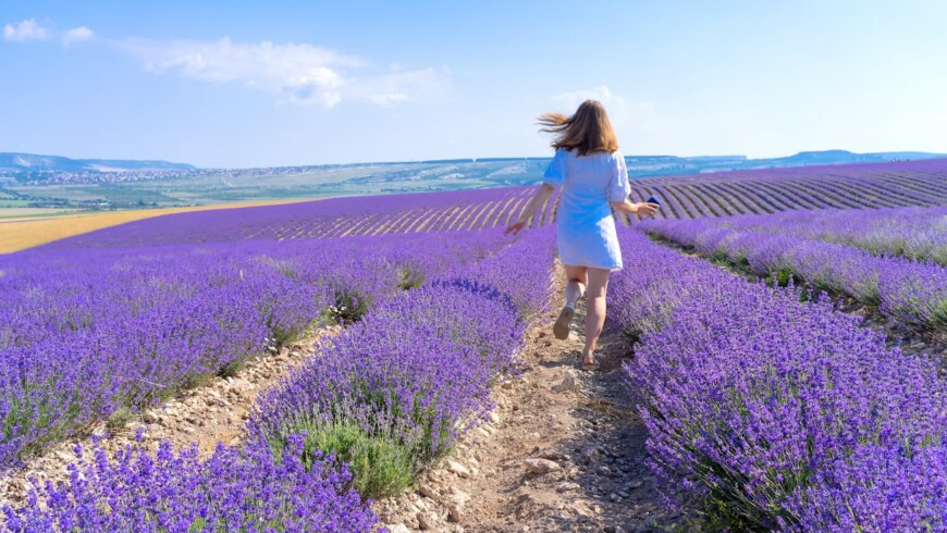 What is Aromatherapy and How Does it Help Me?